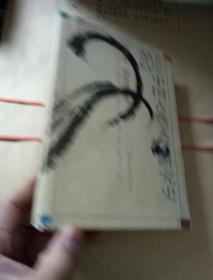 20世纪中国古典文学研究史<<内页有画痕>>