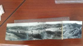 1963安徽祁门县采茶长接片