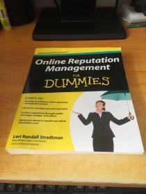 Online Reputation Management For Dummies(原版英文)
