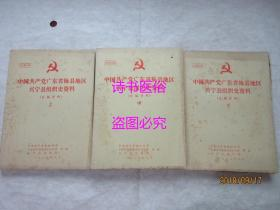 中国共产党广东省梅县地区兴宁县组织史料(自编资料)征求意见稿 上中下3册(1987年)