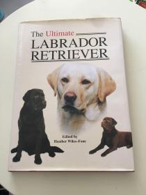 THE UNTIMATE LABRADOR RETRIEVER
