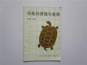 乌龟的养殖与食用