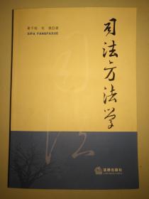 司法方法学(16开平装 厚重册893页)九品