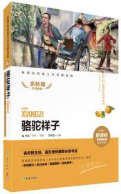 Camel Xiangzi-New Curriculum-Famous Teacher Evaluation