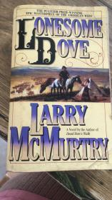 lonesome dove Larry mcmurtry  无笔记