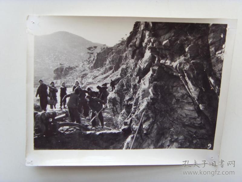 老照片:【※1966年,山东黄县大吕家公社,女社员学大寨搬石运土※】