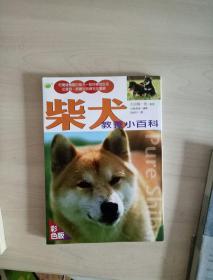 柴犬教养小百科