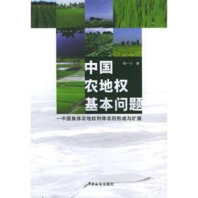 中国农地权基本问题:中国集体农地权利体系的形成与扩展