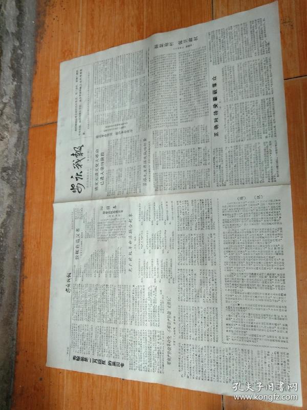 安庆战报,文化大革命进入第四阶段