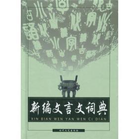 新编文言文词典