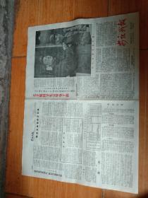 安庆战报,毛林接见