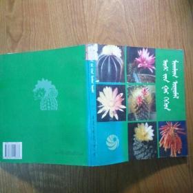 仙人掌及多肉植物(蒙古文)
