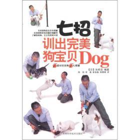 7招训出完美狗宝贝