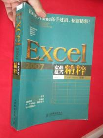 Excel 2007实战技巧精粹 (16开)