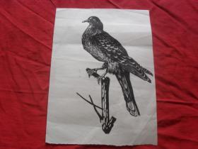 五六十年代版画--(鸟)