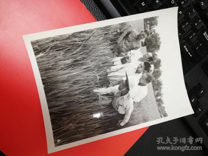 江苏省农科院水稻科学家陈永康与印度尼西亚科学家雅古斯-在北京红星人民公社-唐理奎摄影照片1张