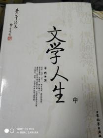 特价![青年读本]文学人生(中)9787800949739