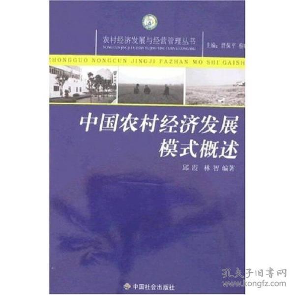 正版全新 中国农村经济发展模式概述