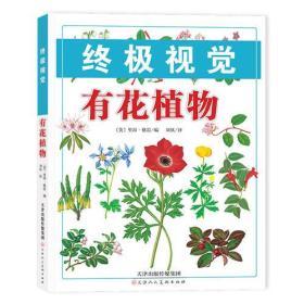 终极视觉 有花植物