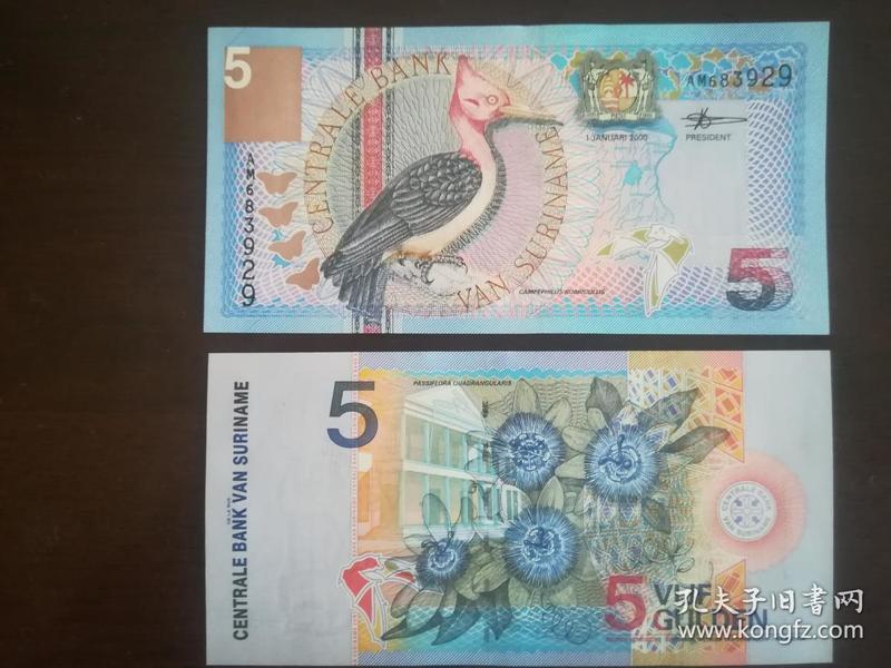 苏里南5盾纸币1枚  红颈啄木鸟 2000年