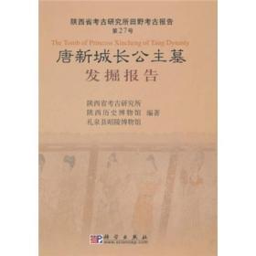 唐新城长公主墓发掘报告