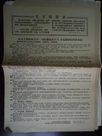 【文革精品大字报布告通告】向毛主席的好学生万晓塘同志学习 永远做彻底的革命派    大8开  见图