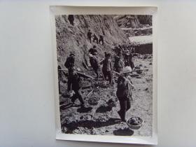 """老照片:【※1966年,山西昔阳县大寨,""""铁姑娘""""队,冒严寒劈山造地※】"""