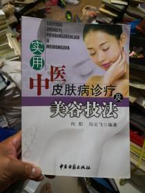 实用中医皮肤病诊疗及美容技法  高于九品          新B4