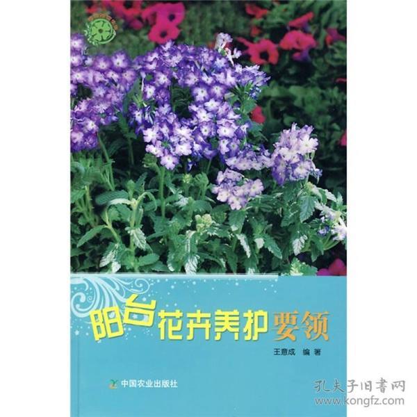 阳台花卉养护要领