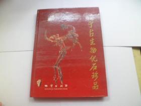 辽宁古生物化石珍品【中英文本】