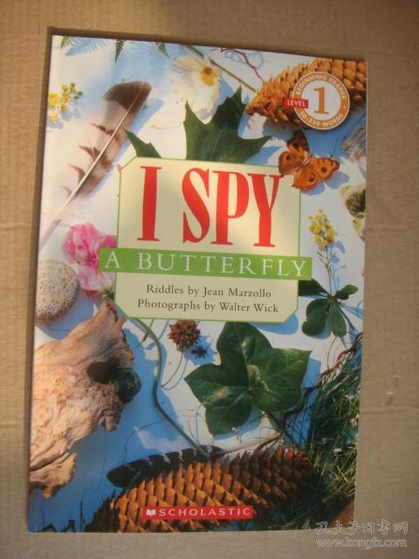 LEVEL 1:I SPY A BUTTERFLY