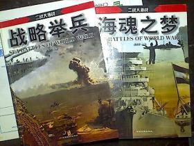 二战大海战2本合售