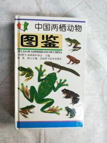 中国两栖动物图鉴