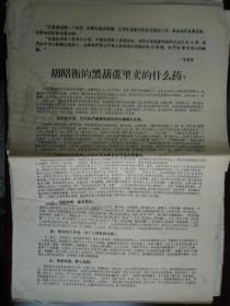 【文革精品大字报布告通告】胡昭衡的黑葫芦里卖的什么药     大8开2面  见图