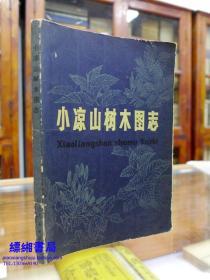 小凉山树木图志——管中天编著 一版一印2000册  以供林业工作者、植物工作者和有关院校生产、科研和教学的参考