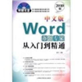 Word办公专家从入门到精通(中文版)