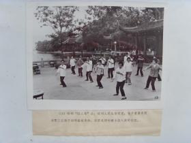 老照片:【※1978年浙江杭州市,杭州市民在西子湖畔晨练※】