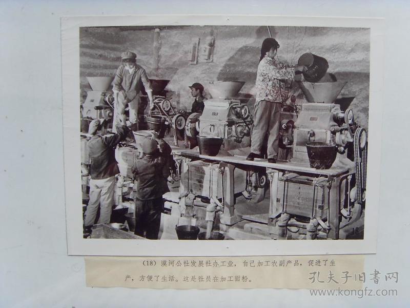老照片:【※1978年,漠河公社,社员加工面粉※】