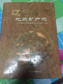 辽宁省志.地质矿产志