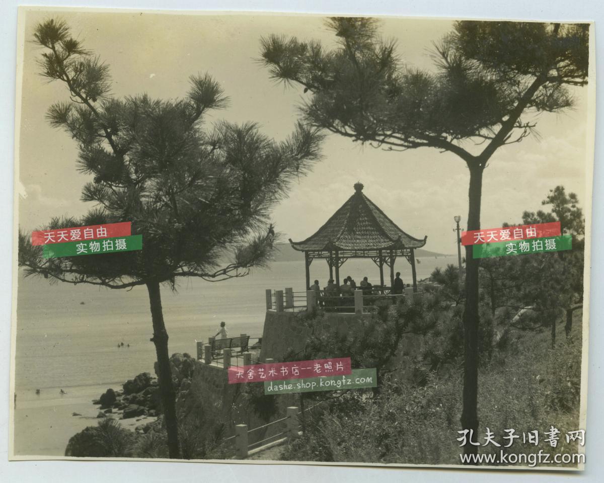 民國山東青海邊涼亭眺望風景老照片,泛銀