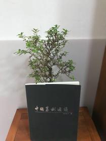 祝遂之签名 印迷林乾良藏并题印 中国篆刻通议