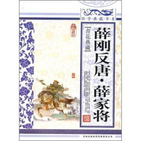 国学典藏书系.人类知识文化精华.珍藏版:薛刚反唐.薛家将
