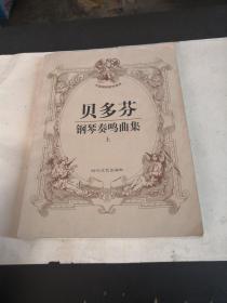 贝多芬钢琴奏鸣曲集  上册