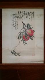 双桃【吴昌硕..作.1959年1版1印 .人民美术出版社.一张.8开大】