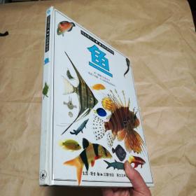 目击者丛书自然博物馆 鱼【精装】