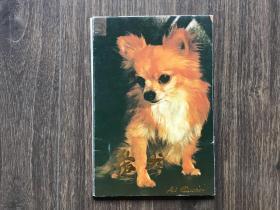 明信片 爱犬(10张一套)