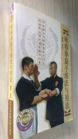 咏春拳黏手练法与用法/咏春拳训练完整教程
