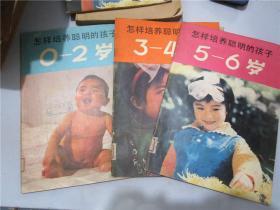怎样培养聪明的孩子·0-2岁+3-4岁+5-6岁(三册合售)