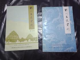 银川文史资料 第五辑  +  第六辑  和售   另外送个银川的小册子