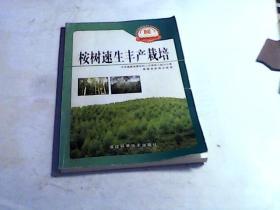 新农村新农民丛书:桉树速生丰产栽培